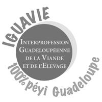 IGUAVIE